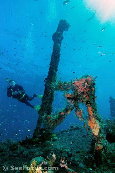 diving report for saint kitts in the caribbean